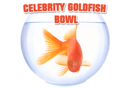 Celebrity Gold Fish Bowl